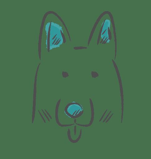 Yiart-Yasemin-Ikibas-Icon-Design-Grafik-Hund-Fotograf-Hundefotograf-Würzburg-Höchberg-Nürnberg-Erlangen-Schweinfurt-Marktheidenfeld-Hund