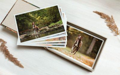 Die Schatzkiste für Deine Erinnerungen: Die Fotobox