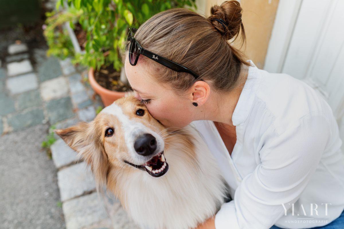 Frieda-Collie-Bamberg-Hund-Fotoshooting-Hundefotoshooting-Hundefotograf-Hundeschule-Hundetrainer-Hunde-Trainer-Hundeladen (9)