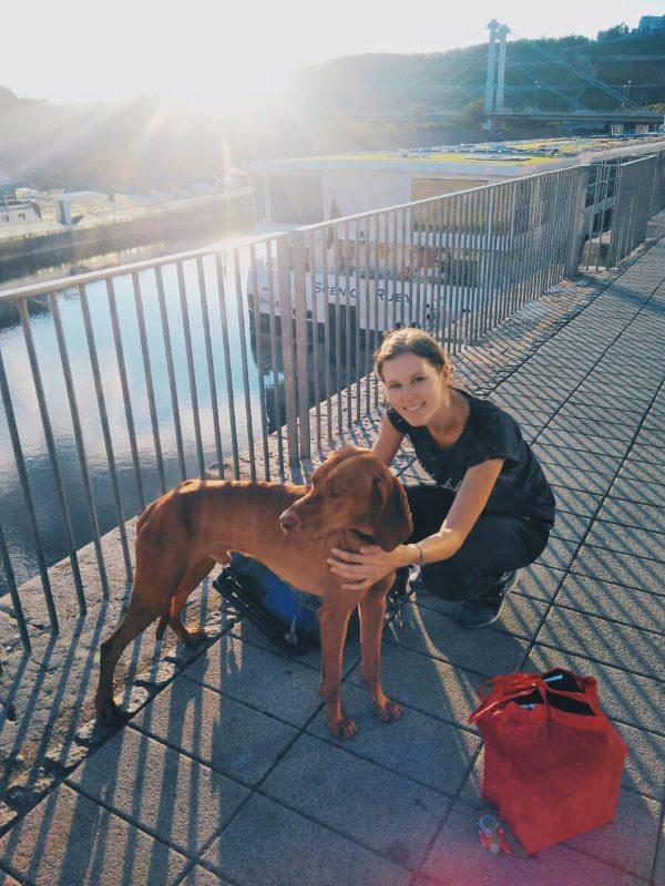 Tierschutz Hund Buch Bildband Bunte Hunde Würzburg Hundefotografin
